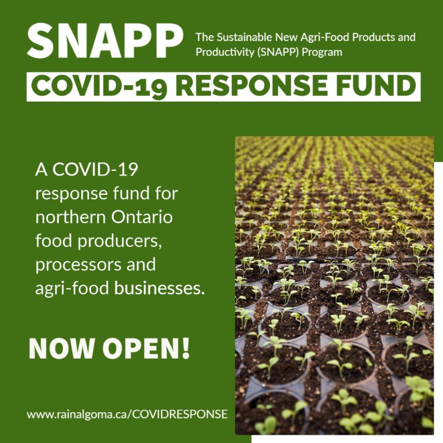 RAIN announces critical COVID-19 Recovery Fund